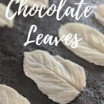 White chocolate leaves on a stone board